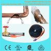 Belüftung-Wasser-Rohr-Heizkabel mit energiesparendem Thermostat