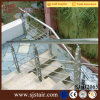Personalizar os trilhos exteriores da escada do aço inoxidável da balaustrada da tubulação do projeto (SJ-H2065)