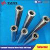 De interne Geschroefte Boorstaven van het Carbide met het Koelen van Gat