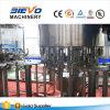 Imbottigliatrice dell'acqua automatica Monobloc calda di vendita e pianta di riempimento