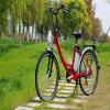 고아한 26  36V 250W 여자 도시 도로 전기 자전거