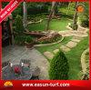 صاحب مصنع إمداد تموين اصطناعيّة عشب حصيرة لأنّ حديقة