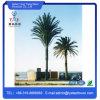 Сплющенная закамуфлированная башня рангоута телекоммуникаций пальмы телескопичной антенны