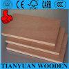 Madera contrachapada de Bintangor/madera contrachapada usada Plywood/Furniture comercial
