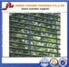 Anti-Arrampicare il recinto d'acciaio saldato galvanizzato della rete metallica di alta sicurezza
