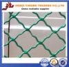 Rete fissa galvanizzata utilizzata finestra della rete metallica del ferro di griglia dell'acciaio a basso tenore di carbonio bella
