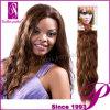 加工されていないインドの人間のバージンの毛の織り方(GP-ISW12 )