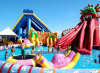 Meno Maintenance Inflatable Slide per Amusenment Park (A679)