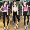 De snel-Droogt Kostuums van uitstekende kwaliteit van de Sport van de Kleren van de Fitness van Vrouwen Nylon