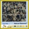 Kitchen Countertop Design를 위한 브라운 Diamond Caesarstone Quartz