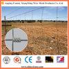 Frontière de sécurité chaude de prairie de frontière de sécurité de zone de treillis métallique de vente