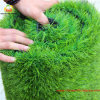 Het modelleren Artificial Turf met Pu Backing
