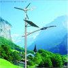 Vent de 40W LED Plus les Réverbères Hybrides Solaires, 6metres Polonais