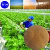 Fertilizante líquido nutriente da colheita composta do elemento de traço do quelato do ácido aminado