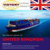 Overzeese Vracht van China aan Felixstowe, Southampton, het UK (Overzeese vracht)