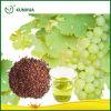 Aceite de semilla de la uva para los cosméticos