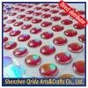 Olhos da atração da pesca da cor do arco-íris da qualidade superior 3D