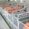 Equipamento da casa do cultivo de porco da alta qualidade