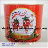 Colla di pomodoro di verdure inscatolata con il materiale fresco del pomodoro
