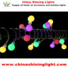 Multi Color 5m LED Bulb String Light