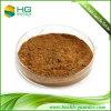 Suplemento ao alimento do Polyphenol 95% EGCG45% do chá verde do extrato do chá verde