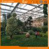 De Serre van het glas voor het Plukken Tuin
