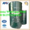 filtro da combustibile diesel automatico di alta qualità 483GB441 per Mack (483GB441)