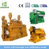 central eléctrica del generador del biogás 30-3000kw