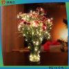 Illuminazione calda della stringa LED del partito di nuovo anno di natale di vendita 2016