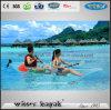 2 de Transparante Kajak Seaters Van uitstekende kwaliteit voor Verkoop
