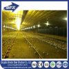 Vertentes agradáveis isoladas do edifício da construção de aço da qualidade do baixo preço