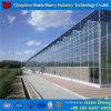 Venlo農業のためのガラスHydroponicシステム温室