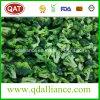 IQF gefrorener organischer Brokkoli mit Brc Bescheinigung