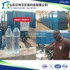 PVDF hohle Faser Mbr (Membranen-Bioreaktor) für industrielle Abwasser-Behandlung
