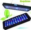 120W iluminación completa del acuario del espectro LED con el contador de tiempo