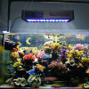 Diodo emissor de luz programável Aquarium Light 150W de Marine Timer Control Automatically