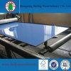 18mmの光沢度の高い装飾紫外線MDF