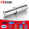 Pumpe Forging Shaft (022Cr22Ni5Mo2N, ASTM A182 F51, S31803, 1.4462)