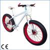 دراجة سمين, شاطئ دراجة, دراجة سمين, ثلج دراجة ([أكم-263])