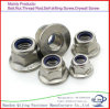 Zinc plaqué M16 Flange Nuts Hexagon Nuts with Flange Carbon Steel Flange Nuts