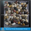 Зацепленное Natural 2-3cm White/Yellow/Grey/Red Pebble Stone