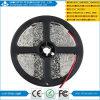 SMD3528 60LEDs Flexible LED Strip Light 5m/Roll