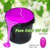 #804j Canni Nagel-Kunst-professionelles reines Farben-Schönheits-Salon-UVgel 1 Galon
