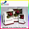 Conjunto de regalo de la promoción Bolsos de compras de papel Bolsos de papel del regalo de día de fiesta