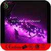 Wasserdichte weiße Weihnachtszeichenkette-Leuchten der Farben-LED rosafarbene
