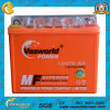 Alta qualità Battery 12V Battery Gel Battery 12V 7ah Gel Motorcycle Battery Hot Sale
