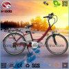 Gute Qualitätselektrisches Stadt-Straßen-Fahrrad des Legierungs-Rahmen-250W