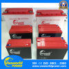 Batteria acida al piombo (SLA) sigillata di manutenzione liberamente per il triciclo elettrico