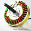 De hoge Motor van het Toestel van de Torsie Lage T/min gelijkstroom Brushless (53621HR-170-CD)