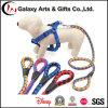 Laisse s'élevante de race de corde de polyester de Cusotm de laisse de crabot de corde grande à vendre